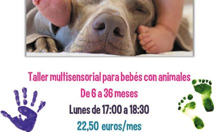 El área de Infancia del Ayuntamiento de Collado Villalba organiza un original Taller de Bebés y Mascotas